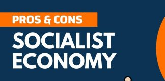 Pros and Cons of Socialist Economy