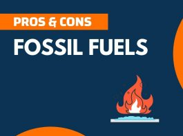 Pros and Cons of Fossil Fuels