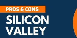 Pros and Cons of Silicon Valley
