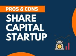 Pros and Cons of Share Capital StartUp