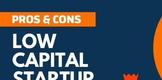 Pros and Cons of Low Capital Startup
