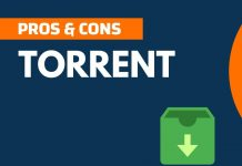 Pros and Cons of Torrent