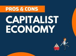 Pros and Cons of Capitalist Economy