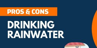 Pros and Cons of Drinking Rainwater